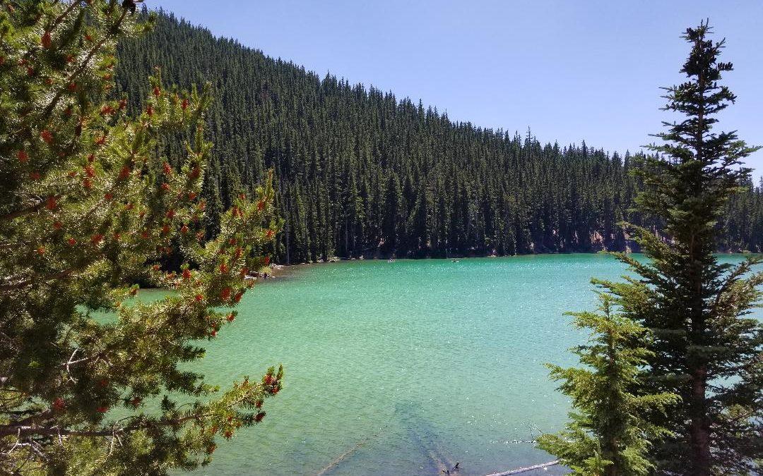 Oregon Coast Bound